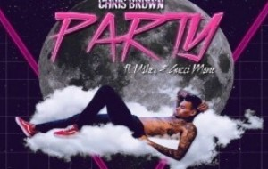 Chris Brown - Party