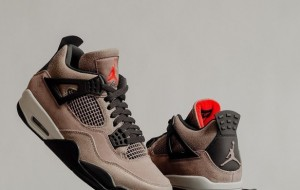 "Air Jordan 4 ""Taupe Haze"" Taupe DB0732-200 2021 Cheap For Sale"
